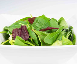 Mixed Leaf Salad